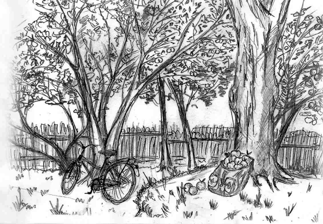 """Иллюстрация к рассказу """"За яблоками"""" из книги Ильи Миронова """"От чистого истока..."""""""